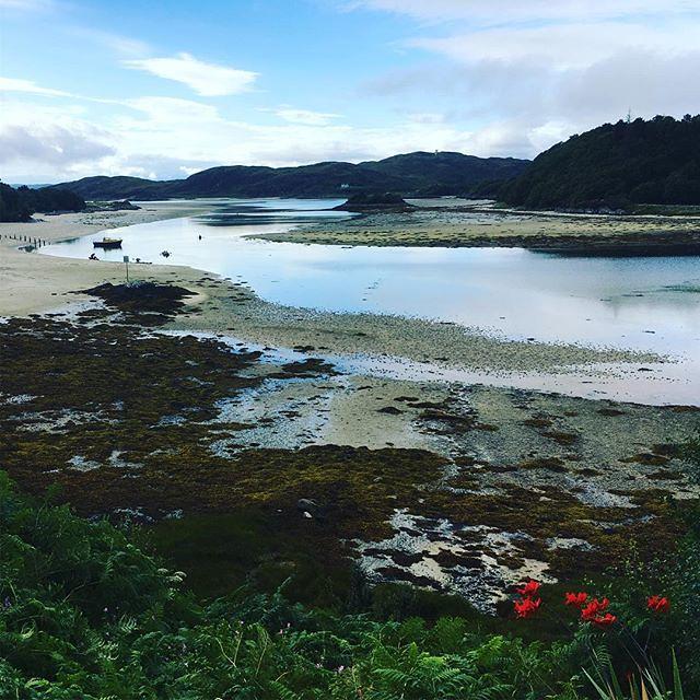 River Morar Estuary #reallyshortriver #homewardbound #aboaticouldsailon #scotland #redflowers
