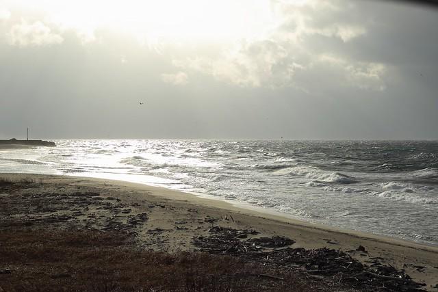 gray sea and sky
