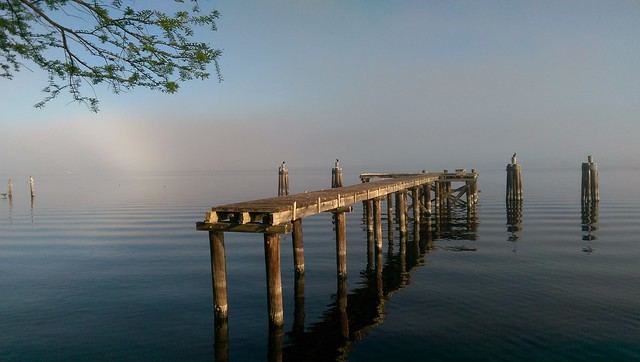 The old docks in Sanford just about an hour ago captured using my smartphone. #htconem8 #Florida