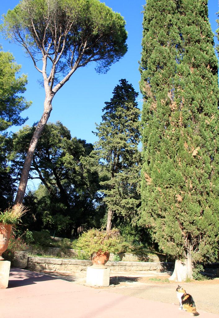 Le jardin des plantes de montpellier france kristel van - Le jardin des plantes montpellier ...