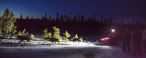 Musher passing by at night | by BLM Alaska