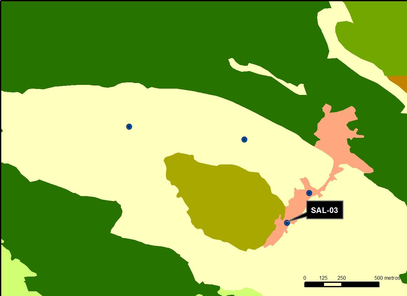 SAL_03_M.V.LOZANO_VIEJA_MAP.VEG