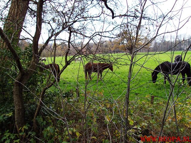 15-11-2009            Gooise lus       18.5 KM    NS Wandeltocht  (42)
