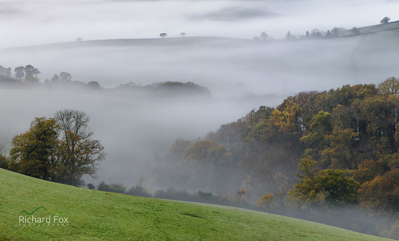 Autumnal Mists