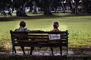 Sri Lanka. Colombo. Viharamahadevi Park.