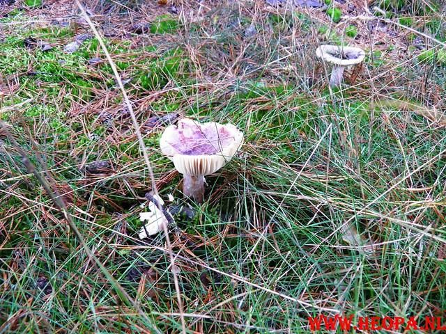 22-10-2011             Driebergen         26 km (40)