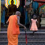 14 Viajefilos en Sri Lanka. Yala 49