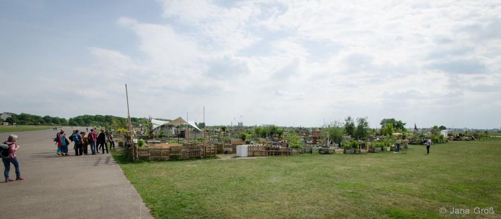 Exkursion urbanes Gärtnern im Kiez