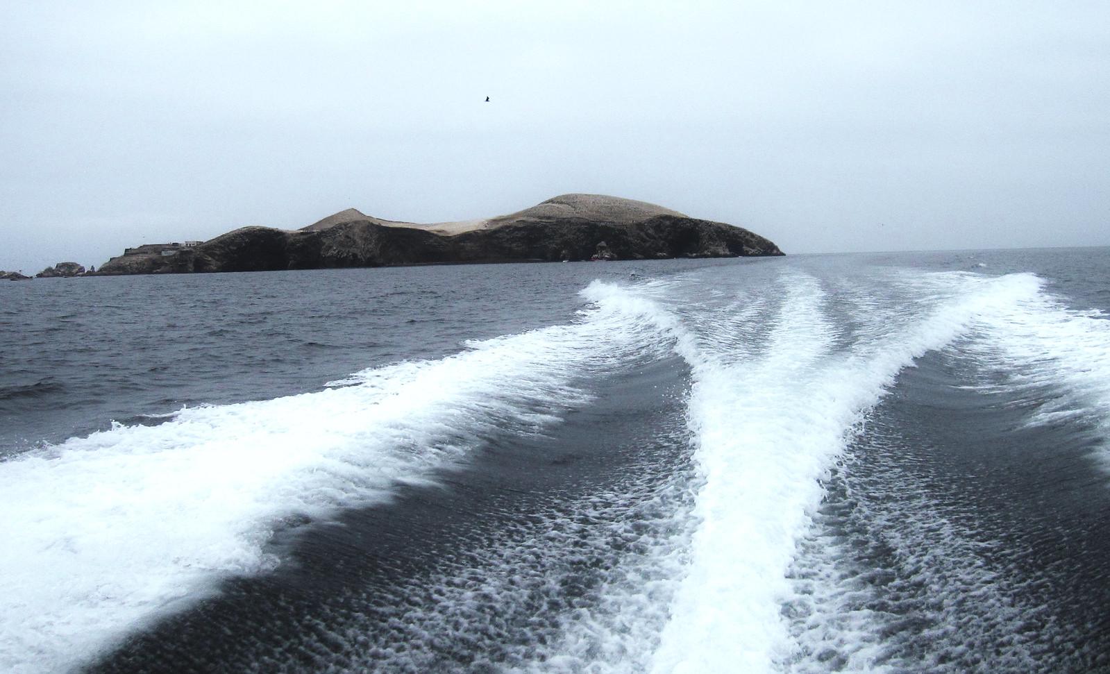 Islas Ballestas 133