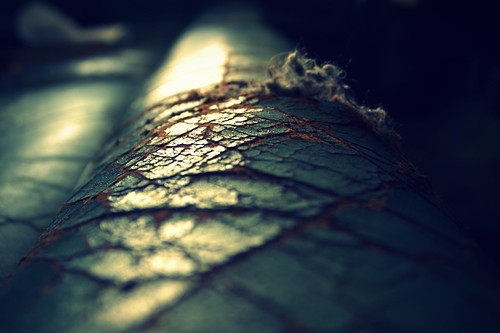 Weathered.   by Joseph Skompski