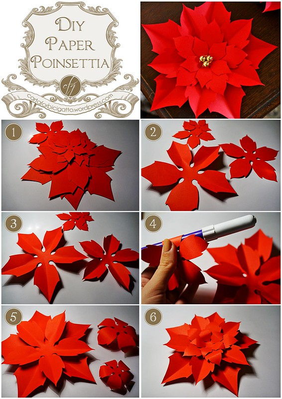 Diy Paper Poinsettia Carta Forbici Gatto