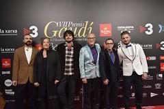 Catifa vermella VII Premis Gaudí (11)