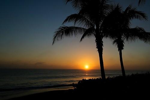"morning nature sunrise outdoors nikon florida verobeach verobeachflorida verobeachfl ""randyroberts"" 57rroberts"