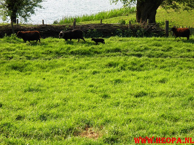 30-04-2011   Boven-Leeuwen  40 Km (18)