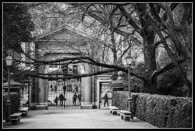 Jardín Botánico - Madrid - España