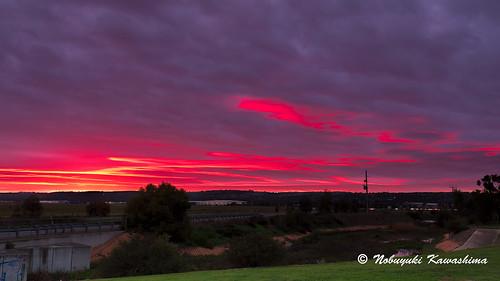 pink sky sunrise australia southaustralia unisa mawsonlakes
