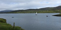 diversity - seaweed holding facility under tow, leisure vessel under sail, and a creel fisher underway...