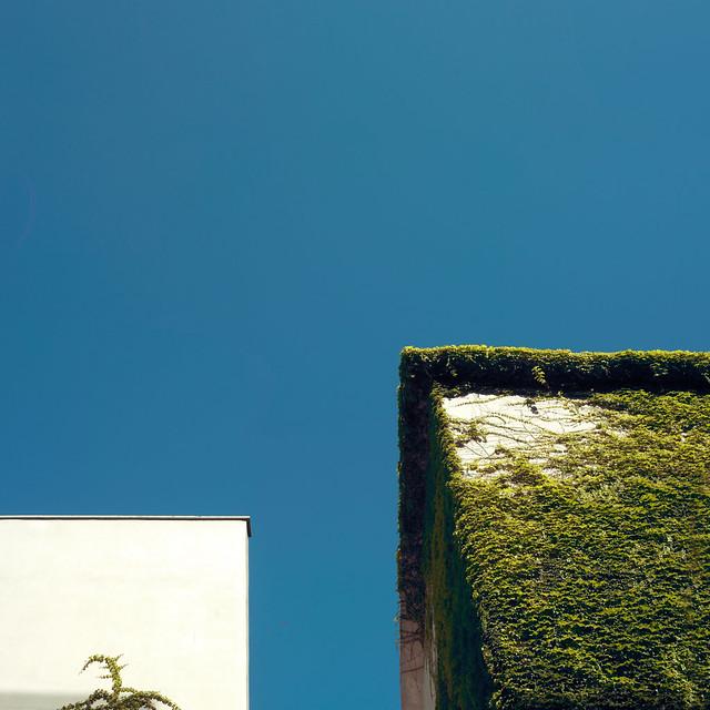 White Square, Green Square, Blue Sky