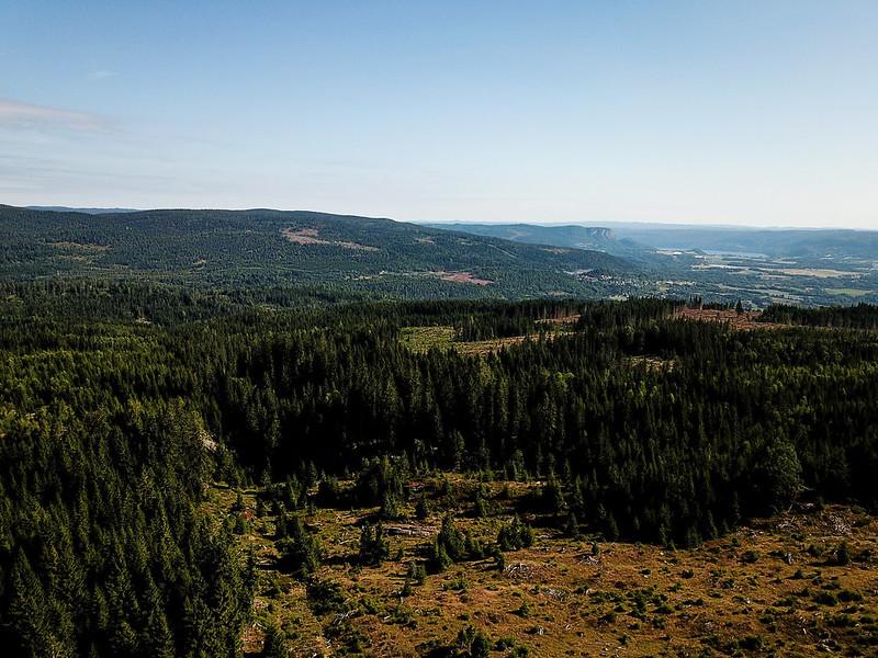02-Utsikt mot Gjevlekollen fra Overskylda (drone)