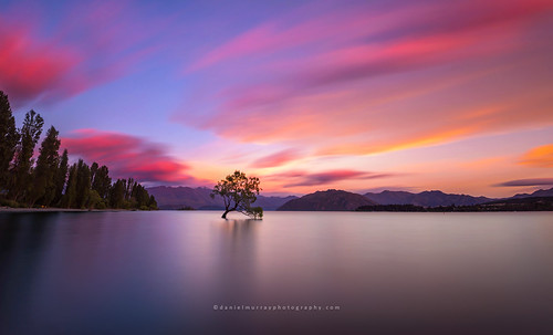 new mountain lake tree sunrise landscape scenery zealand nz wanaka southnz