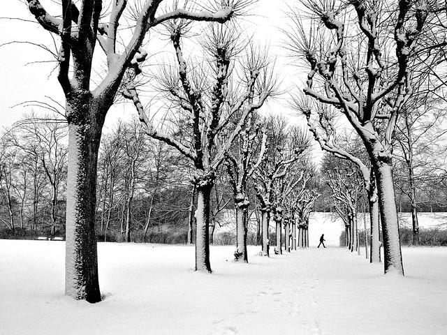 Winter on Bellahoj