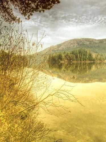 lake island cabin shawniganlake
