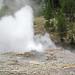 Fan Geyser (Morning Glory Group, Upper Geyser Basin, Yellowstone Hotspot Volcano, nw Wyoming, USA)