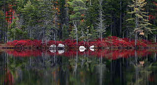 Pond reflection | by Katahdin Woods & Waters NM