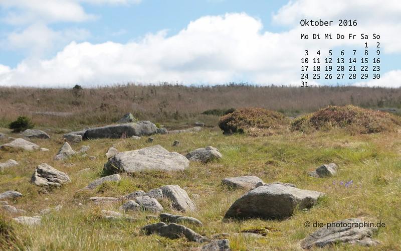 wiese-weitblick_oktober_kalender_die-photographin