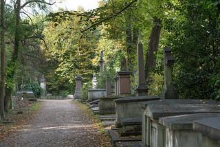 Nunhead Cemetery | by sczscz