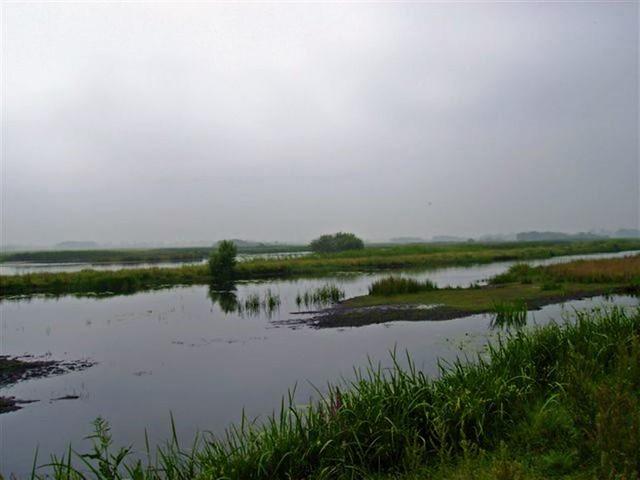 Oud Zuilen 20070609   40 km (24)