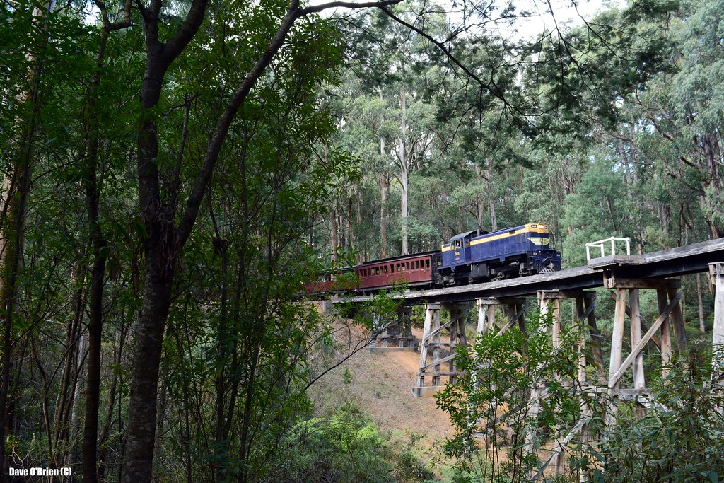 DH5 crosses the big bridge at Wright with an up Gembrook pass. 22/2/15 by Dave O'Brien