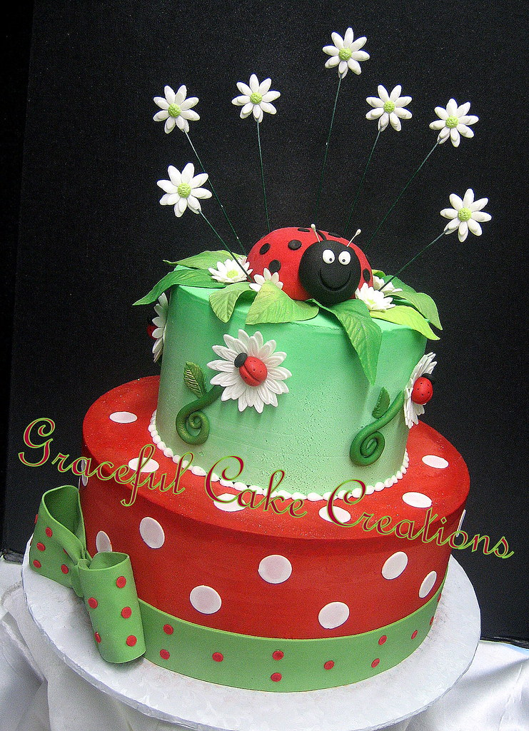 Tremendous Beautiful Ladybug And Daisy Birthday Cake Grace Tari Flickr Funny Birthday Cards Online Alyptdamsfinfo