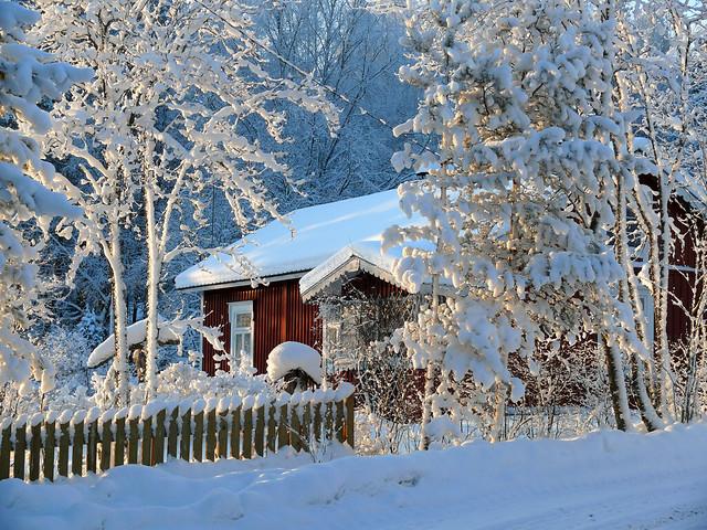 1st DEC | Winter Wonderland