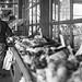 Beware the Fruit Inspectors by David Arbogast
