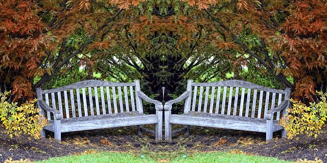 bench symmetry