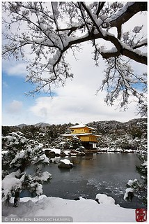 Kinkaku-ji in winter, Kyoto, Japan   by Damien Douxchamps