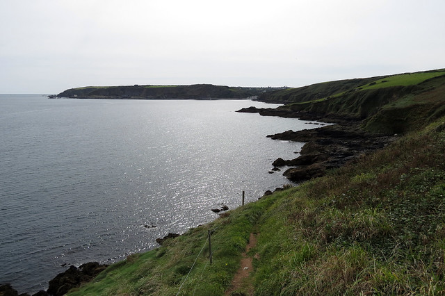 View south from Nare Head