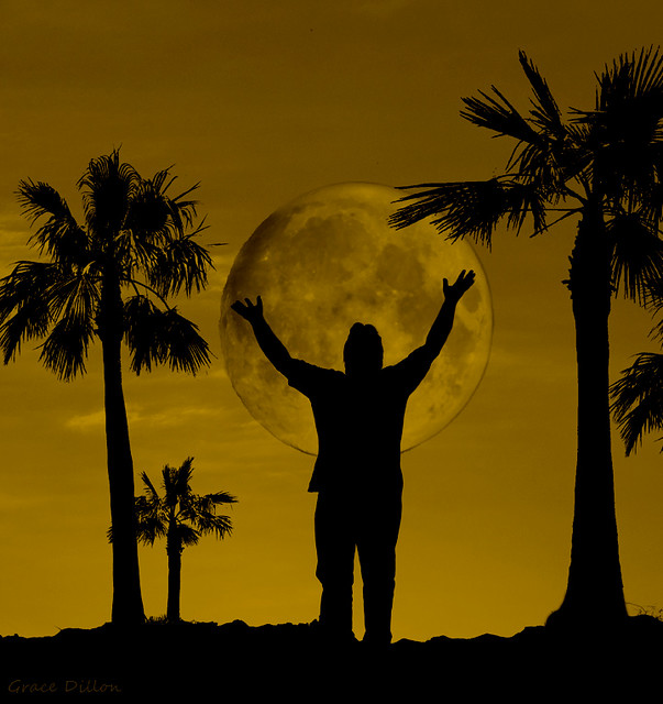 Worship by Moonlight