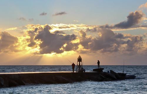 travel sea usa nature fishing florida miami sunrize