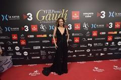 Catifa vermella VII Premis Gaudí (98)