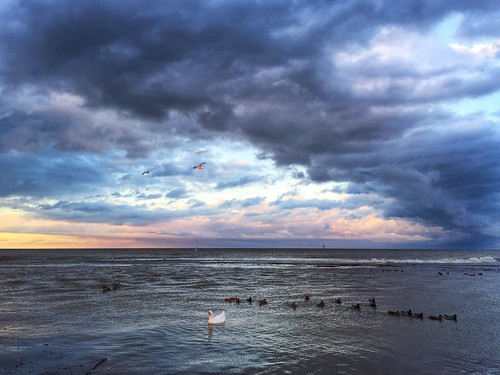 sunset nature lakeerie silvercreek westernnewyork wny westernny