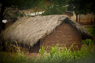 Mud Brick Thatched Roof Home