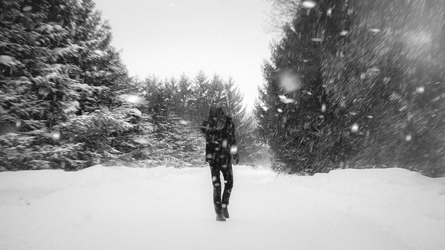 55/365 Snowstorm