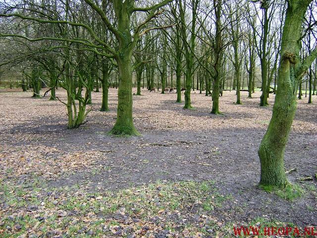 Baarn 40 Km    22-11-2008 (40)