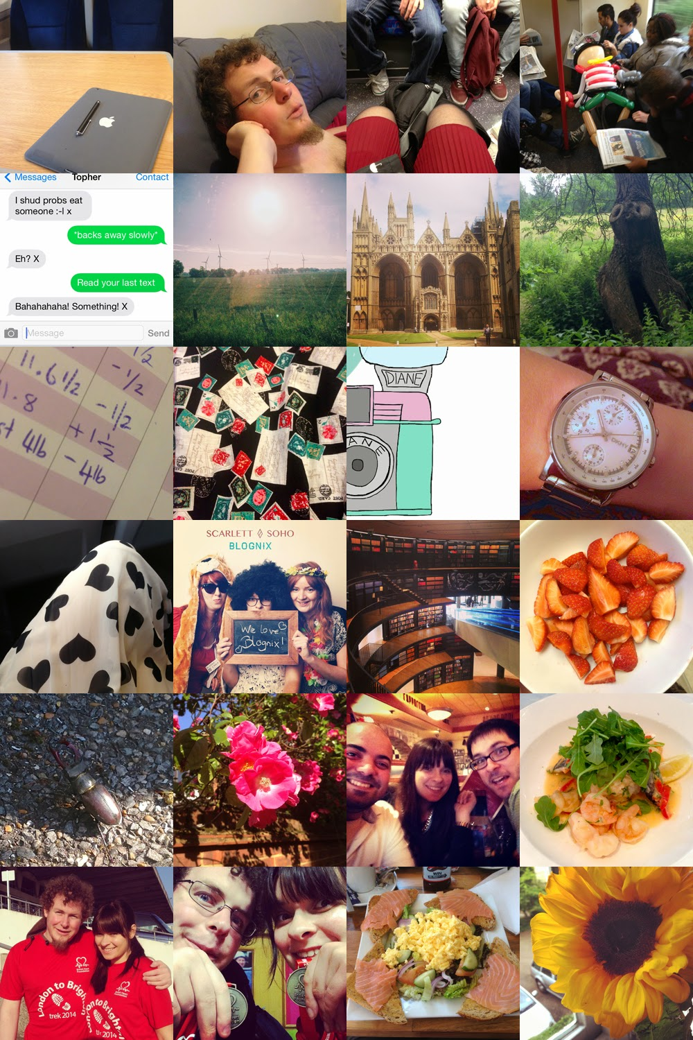 365 Project: June Edition of Taking a Photo Everyday