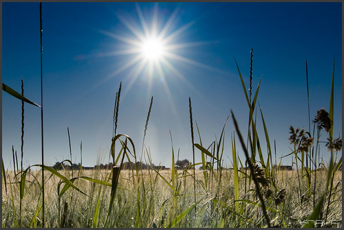 sunrise canon eos sonnenaufgang landscape nature natur landschaft golden sommer summer
