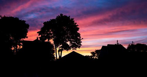 pink blue sunset sky orange tree home nature beautiful beauty silhouette night canon lens landscape island amazing backyard purple candy rhodeisland cotton kit rhode unbelievable pawtucket