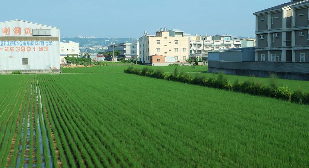 農地與工廠、房舍夾雜是台灣常見的現象。攝影:陳文姿