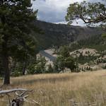 Yellowstone River (near Agate Creek)